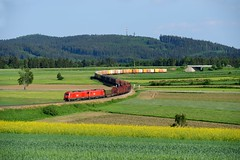 ÖBB 2016.021 + 003 Sprögnitz (3485) (christophschneider1) Tags: siemens tandem öbb waldviertel 2016 er20 loschberg sprögnitz gemischtergüterzug 2016021 kbs830 vg73145