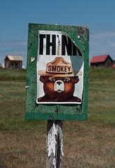 Think!  DSC_7566 (Katrina Wright) Tags: bear washington think smokey ghosttown molson