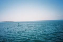 764277T-R1-047-22 (aspininaspiritcar) Tags: ocean sea summer sky film beach field ferry 35mm boat marthas vineyard sand rocks minolta massachusetts atlantic marthasvineyard