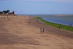 P7120237 (mumrahhh2310) Tags: beach clocktower exmouth flowerbeds exmouthbeach
