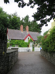 Bunratty, la maison du médecin... (LILI 296...) Tags: fleur maison irlande chaume chaumière bunrattyfolkpark