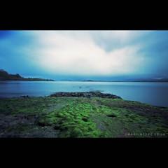 Isle of Lismore, Scotland (Pinhole) (martintype) Tags: west film coast scotland pinhole zero2000 zeroimage lismore zero69 andymartin isleoflismore martintype