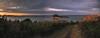 sunset sur stérec (Francois Le Rumeur) Tags: ajoncs ajonc brittany france côte littoral baie bay ocean sea mer ciel cloudy cloud chemin path yellow nikon d7100 hd 4k vhq uhq bretagne finistère stérec island ile seascape landscape nature paysage sunset coucher de soleil extérieur calme champ horizon evening coucherdesoleil