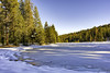 Frozen Pond in Kings Canyon (punahou77) Tags: kingscanyon kingscanyonnationalpark hike hiking california camping pond punahou77 park nature nikond7100 nationalpark meadow princesscampground landscape trees pines sierras sierranevada snow winter wilderness