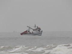 Um pequeno pesqueiro (JODF) Tags: praia navegantes santacatarina gaivota quadra bemtevi