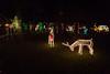 20161218-5D3_5175.jpg (kirkswann) Tags: lights christmas dickinson