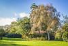 IMG_0623 (digitalarch) Tags: 네덜란드 헤이그 netherlands hague 덴하그 denhaag 로사리움 rosarium 장미정원