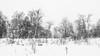 winter impression (MR@tter) Tags: 169 bäume deutschland herscheid märkischerkreis nrw natur nordhelle sauerland schnee wald winter sw meinerzhagen nordrheinwestfalen de snow ebbemoore geotagged bw