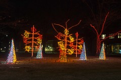 Nela Park 38 (rwerman) Tags: ge generalelectric nelapark christmas christmaslights christmastree lights eastcleveland