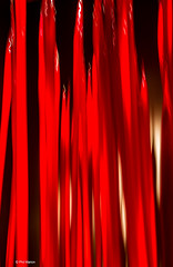 Long exposure with vertical motion abstract of red glass: Artist Dale Chihuly - Royal Ontario Museum, Toronto (Phil Marion (68 million views - thank you all)) Tags: travel 5photosaday beautiful cosplay candid beach woman girl boy teen 裸 schlampe 懒妇 나체상 फूहड़ 벌거 벗은 desnudo chubby young ふしだらな女 nackt nu निर्वस्त्र 裸体 ヌード नग्न nudo ਨੰਗੀ голый khỏa upskirt جنسي 性感的 malibog कामुक セクシー 婚禮 hijab nijab burqa telanjang обнаженный сексуальный tranny عري nude naked sexy برهنه وقحة nubile phat cleavage slim plump sex slut nipples ass hot xxx boobs dick balls tits fat