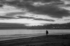 Salt & Sympathy (blueteeth) Tags: coast beach ocean silhouette walker cloudscape monochrome blackwhite grain
