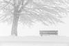 Inverno (beppeverge) Tags: bench beppeverge bielmonte cold freddo frozen gelato ghiaccio ice neve oasizegna panca snow