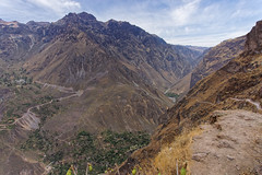 Na szlaku w kanionie Colca | Hike in the Colca canyon