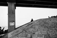 Thoughts | Pamban,Rameswaram. (vjisin) Tags: rameswaram pamban bridge train bird indianstreetphotography streetphotography india asia tamilnadu incredibleindia outdoor structure slope humanelement sea