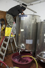 Wine making - Podere Il Cocco (rfzappala) Tags: europe italy tuscany toscana 2016 podere il cocco wine making winery vineyard