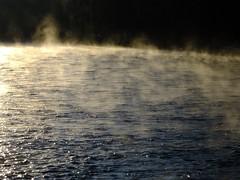 Skagit River at Dawn (BriarCraft) Tags: mist river water skagitriver contrejour