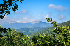 The breathing mountain (saromon1989) Tags: mountain mountains landscape panorama green summer trees sky