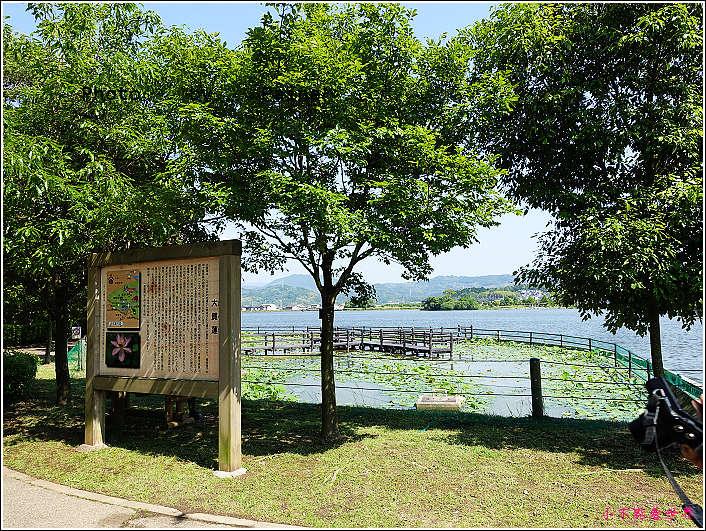 和歌山大池遊園-平池綠地公園 (17).JPG