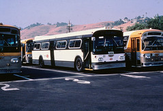 092 RTD New Scheme Minus Rd Stripes Div 3 19810530 PK (Metro Transportation Library and Archive) Tags: buses scrtd alanweeks southerncaliforniarapidtransitdistrict