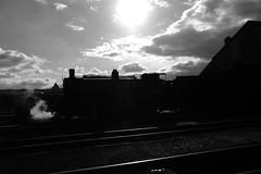 GWS 34213bw (kgvuk) Tags: greyhound trains locomotive railways 440 didcot steamlocomotive gws didcotrailwaycentre t9 30120 30289 greatwesternsociety didcotengineshed 81e