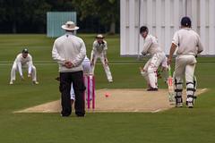 falpet-cricket-49 (falconoldboys) Tags: cricket match fundraiser 60thanniversary peterhouse falconoldboys petreans falconfielding