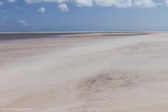 Curracloe Beach, The Raven Point. Co Wexford, Ireland. Fuji FP-100c Cool+ (Luke Hasnotenough) Tags: ireland beach point raven wexford 2015 curracloe
