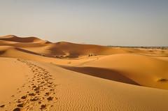 At Erg Chebbi in Sahara Desert - Merzouga, Morocco [2012] (Jose Constantino Gallery) Tags: morocco desert sahara ergchebbi merzouga
