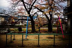 20161129-L1000195 (Mac Kwan) Tags: leica travel japan kyoto m240 color street