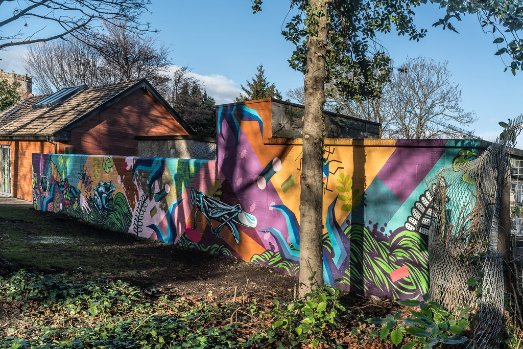 NEW STREET ART AND NEW TEAROOMS [HERBERT PARK DUBLIN]-124059