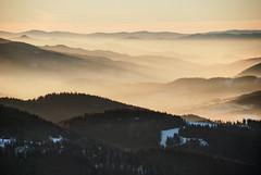 Island Beskids - A view from Mogielica (Karol Majewski) Tags: mountains góry landscape krajobraz nature natura morning sunrise wschód carpathians karpaty winter snow zima śnieg mogielica beskidy beskidwyspowy gorce valley dolina clouds chmury fog mist mgła pieniny dunajec