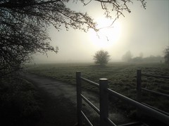 Gate onto the Moor (guthrie79uk) Tags: hobmoor holgate acomb york northyorkshire mist winter