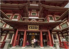 "Singapore 1038 (Fermin Ezcurdia) Tags: singapur singapore ""sudeste asiático"" skyline ""marina bay sands"" ""maryba bay"" chinatown ""barrio indio"" barrio musulman"" ""bufaflo road"" ""clarke quay"" ""orchard ""garden by ""sultan mosque"""