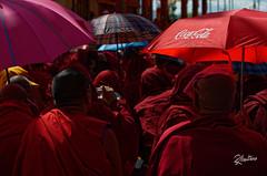 Sponsored (Riccardo Maria Mantero) Tags: buddhist mantero riccardomantero riccardomariamantero buddist cocacola india people religion sponsor travel