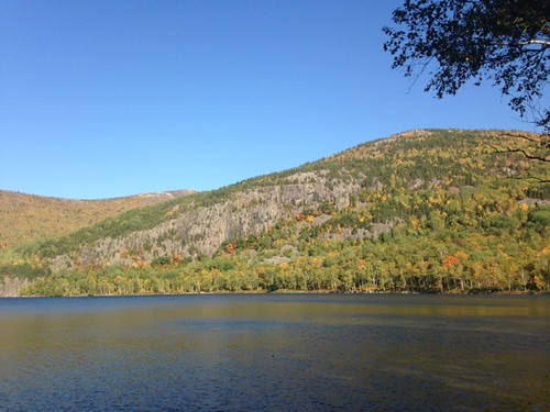 Upper S. Branch Pond - www.amazingfishametric.com
