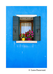 Burano island, Venice, Italy (laura passavanti) Tags: burano island shutters travel italy landmark venice old picturesque traditional window wall famous color city colorful house vintage facade outdoor decoration vivid paint building architecture background exterior flowers colored door bright blinds curtains decorated urban entrance closeup