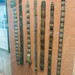 Metal Malaysian belts