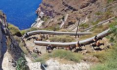 FIRA - ISOLA DI SANTORINI (cannuccia) Tags: paesaggi landscape isoladisantorini fira grecia strade people curve