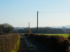Walking to the Village (ART NAHPRO) Tags: village life winter 2017 january trees fields hill valley sunlight frost