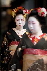Fresh (byzanceblue) Tags: kikusana kikuyae 菊咲奈 菊弥江 京都 舞妓 宮川町 花ふさ hanafusa bokeh black white red kimono kanzashi kyoto japan japanese traditonal formal cute fresh beauty lovely color geisha maiko miyagawacho