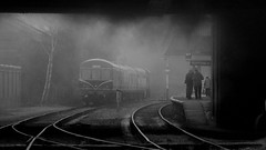 After the train has gone (Duck 1966) Tags: 70013 olivercromwell gcr goods loughborough timelineevents train gloom