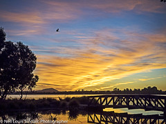"LAKE WENDOUREE Bridge 3 • <a style=""font-size:0.8em;"" href=""http://www.flickr.com/photos/141572193@N06/32638048106/"" target=""_blank"">View on Flickr</a>"
