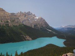 Peyto northwest (classic view) (altamons) Tags: mountain canada mountains nature water landscape rockies hiking rocky alberta banff rockymountains mountainview banffnationalpark peytolake canadianrockies altamons