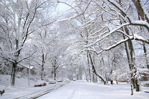 Snow Storm by Sami'.