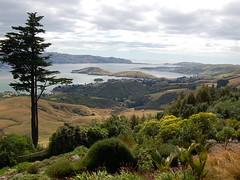 Otago Peninsula (ladotyk) Tags: trip dunedin