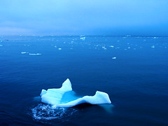 Floating in the arctic light (kenyai) Tags: ocean blue sea 15fav seascape cold ice mare north floating svalbard arctic pack polar northern acqua oceanview nordsee artic freddo spitsbergen oceano ghiaccio northpole northsee circolopolareartico banchisa oceanscape maredelnord interestingness132 i500 nordico marartico