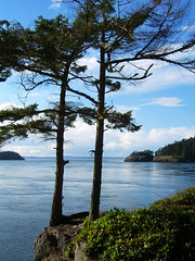 Puget Sound (bentilden) Tags: blue summer sky usa reflection tree green water beautiful clouds islands washington rocks foliage casio exz750 whidbeyisland pugetsound exilim
