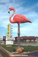 Flamingo Motel, Wisconsin Dells, WI