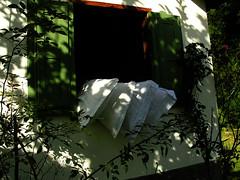 travesseiros ao sol... (zenog) Tags: ~~ pillows cabana oreillers underthesun cuscini souslesoleil sottoilsole