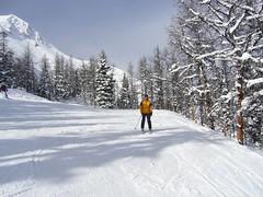 On the run (literally) (famous boxer) Tags: canada ski banff lakelouise sunshinevillage