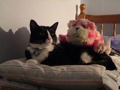 Felix and Bagpuss (Iain Cuthbertson) Tags: pink stuffedtoy white black cat bed felix bagpuss cowcat f700